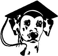 Dalmacademy's Dalmatische honden